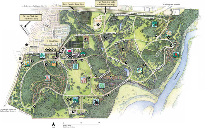 Us National Arboretum Map U.S. National Arboretum
